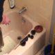 Déboucher des lavabo puis Débouchage canalisation eau pluviale